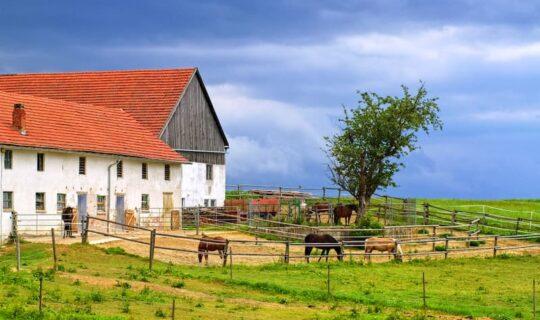 Was ist bei der Renovierung eines alten Bauernhauses zu beachten?